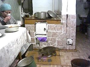 2003_02_03 г.Свободный, частный дом, 2003 год